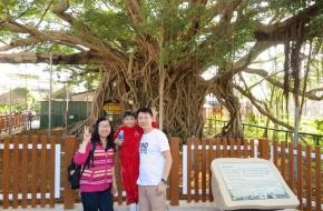我們終於來到了樹屋。